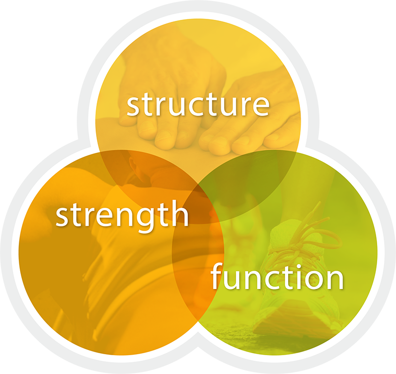 structure-strength-function-icon
